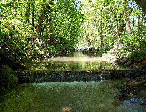 Kaskády – Ráztočný potok